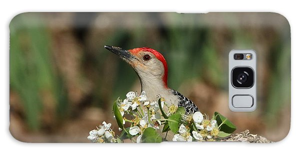 Red-bellied Woodpecker In Spring Galaxy Case