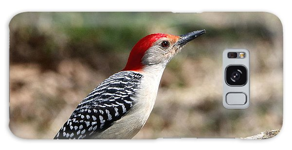 Red-bellied Woodpecker Galaxy Case by Sheila Brown