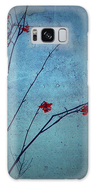 Red Berries Blue Sky Galaxy Case