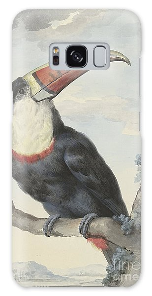 Toucan Galaxy Case - Red Billed Toucan, 1748  by Aert Schouman