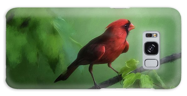 Red Bird On A Hot Day Galaxy Case by Lois Bryan