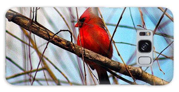 Red Bird Sitting Patiently Galaxy Case