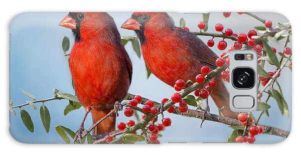 Red Birds In Red Berries Galaxy Case