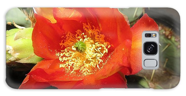 Red Bloom 1 - Prickly Pear Cactus Galaxy Case