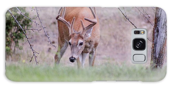Galaxy Case featuring the photograph Red Bucks 6 by Antonio Romero