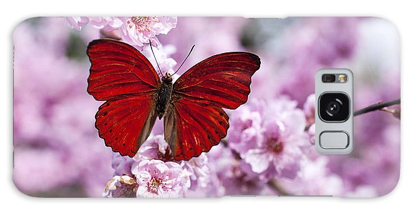 Beautiful Galaxy Case - Red Butterfly On Plum  Blossom Branch by Garry Gay