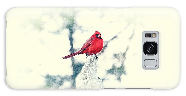 Red Cardinal On Angel Wing Galaxy Case