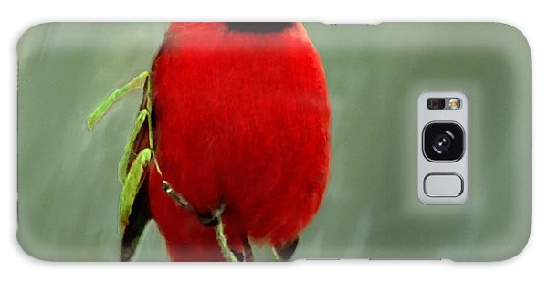 Red Cardinal Painting Galaxy Case