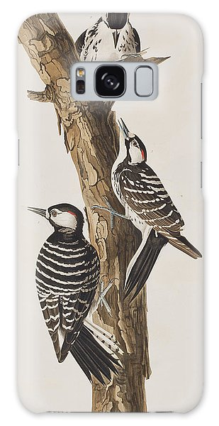 Red-cockaded Woodpecker Galaxy Case