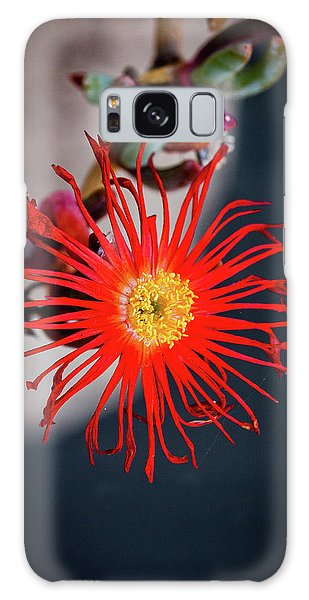 Red Crab Flower Galaxy Case