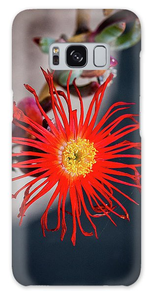 Red Crab Flower Galaxy Case