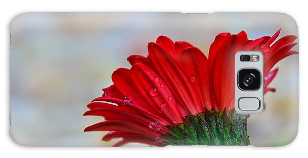 Red Daisy  Galaxy Case