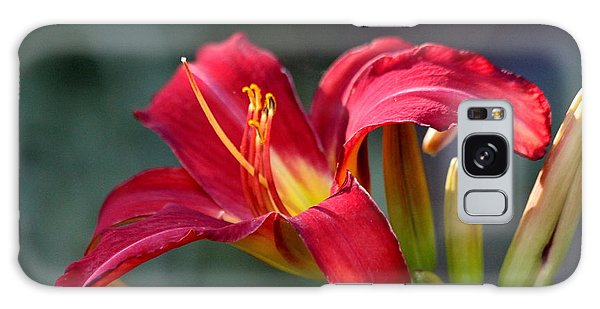 Red Day Lily  Galaxy Case