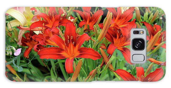 Red Daylilies Galaxy Case
