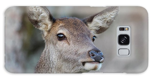 Galaxy Case featuring the photograph Red Deer Hind - Scottish Highlands by Karen Van Der Zijden