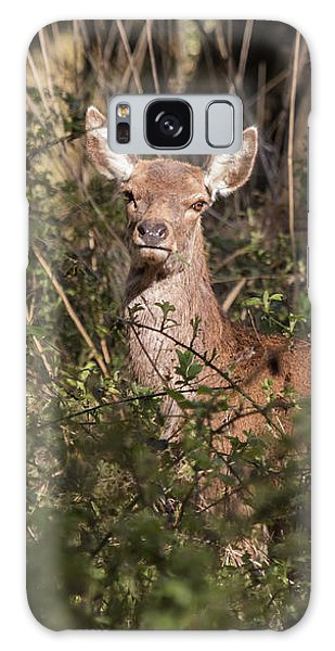 Red Deer Galaxy Case