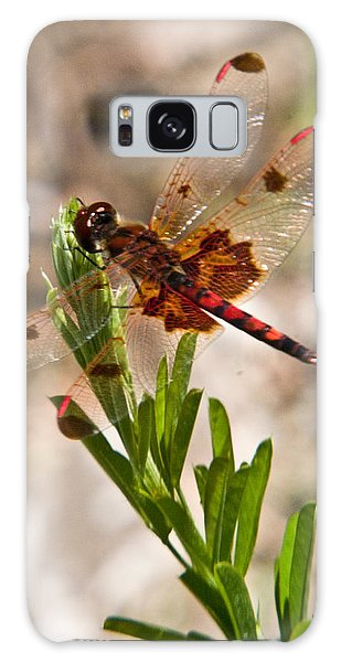 Crossville Galaxy S8 Case - Red Dragonfly by Douglas Barnett