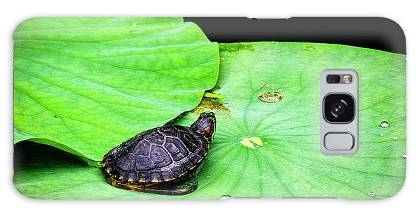 Red-eared Slider Galaxy Case