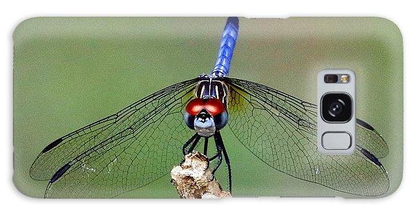 Red Eyed Dragonfly Galaxy Case by Myrna Bradshaw