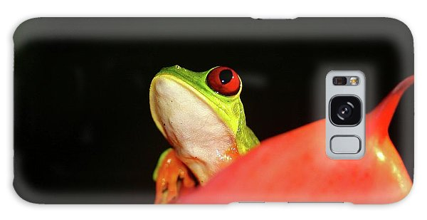 Red-eyed Tree-frog Galaxy Case