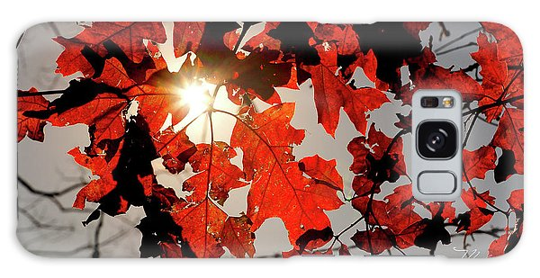 Red Fall Leaves Galaxy Case