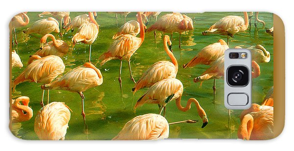 Red Florida Flamingos In Green Water Galaxy Case