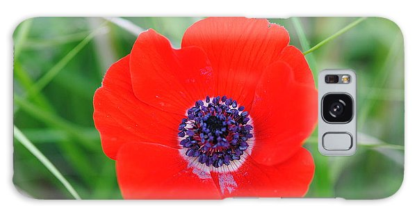 Red Anemone Coronaria 3 Galaxy Case