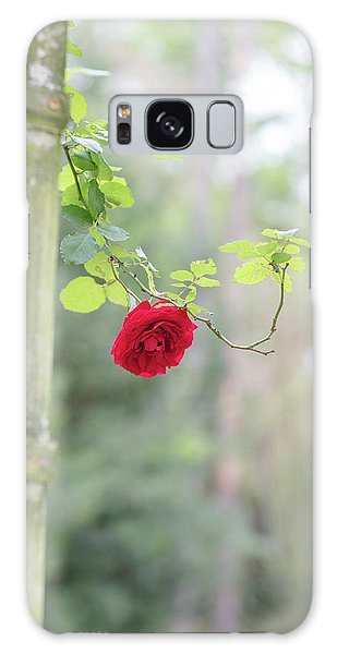 Red Flower Garden Galaxy Case