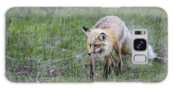Red Fox Hunting Galaxy Case
