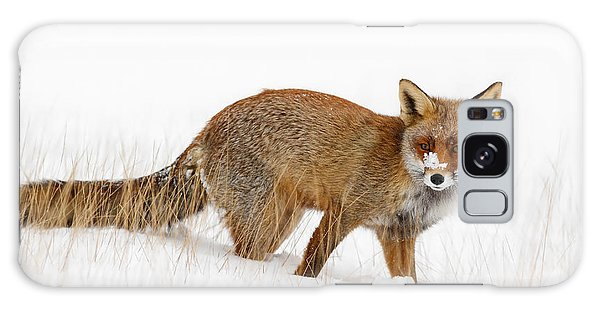 Red Fox In A Snow Covered Scene Galaxy Case
