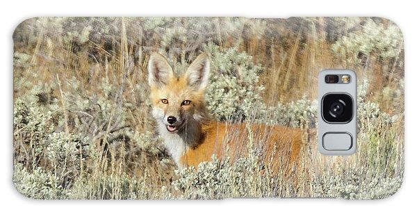 Red Fox In Sage Brush Galaxy Case