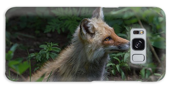 Red Fox In The Forest Galaxy Case