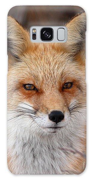 Red Fox In Winter Ruff Galaxy Case