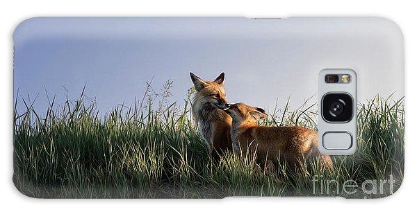 Red Fox Morning Galaxy Case