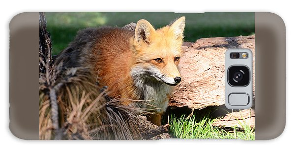 Red Fox On Patrol Galaxy Case