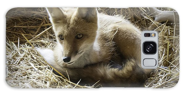 Sly Galaxy Case - Red Fox by Phyllis Taylor