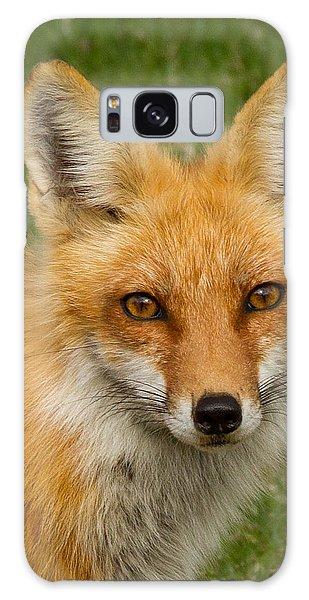 Red Fox Portrait Galaxy Case by Brian Caldwell