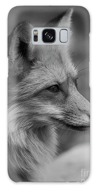 Red Fox Portrait In Black And White Galaxy Case