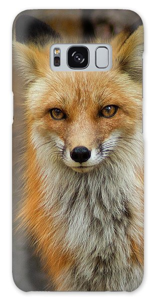 Red Fox Portrait Galaxy Case by John De Bord