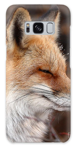 Red Fox With Ice Formed On Brow Galaxy Case
