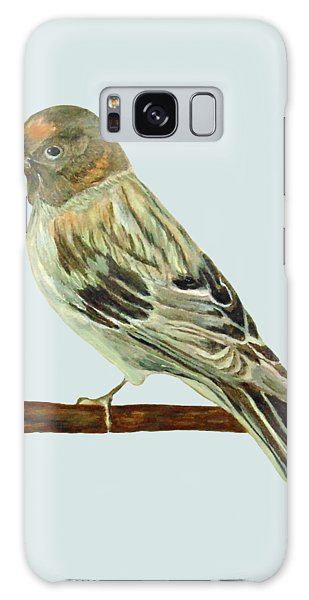 Red-fronted Serin Galaxy Case
