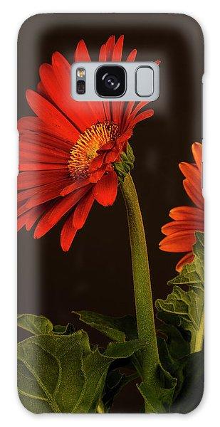 Red Gerbera Daisy 1 Galaxy Case by Richard Rizzo