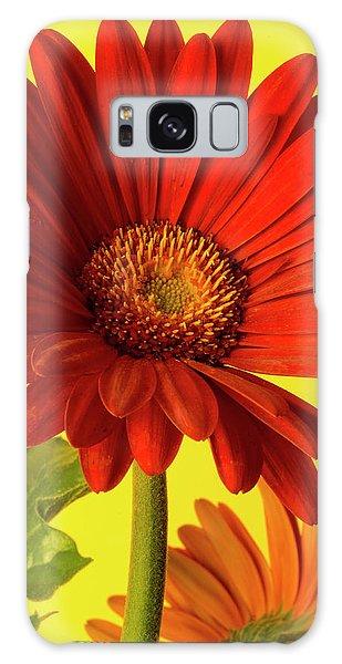 Red Gerbera Daisy 2 Galaxy Case by Richard Rizzo