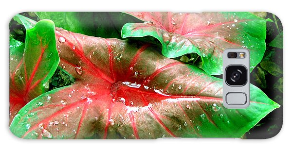 Galaxy Case featuring the painting Red Green Caladium Floral Still Life Morning Rain by Mas Art Studio