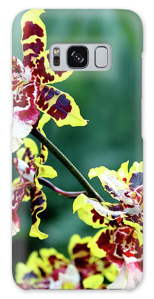 Striped Maroon And Yellow Orchid Galaxy Case