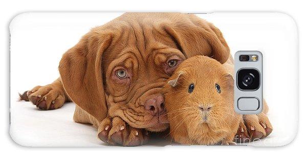 Red Guinea Pig And Dogue De Bordeaux Galaxy Case