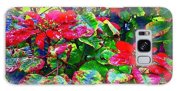 Red Hawaiian Poinsettias In Puna Galaxy Case