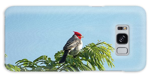 Red-headed Cardinal On A Branch Galaxy Case