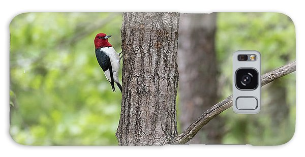 Red-headed Woodpecker 2017-1 Galaxy Case by Thomas Young