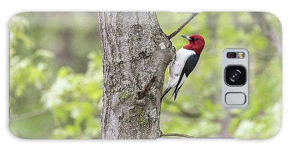 Red-headed Woodpecker 2017-2 Galaxy Case by Thomas Young